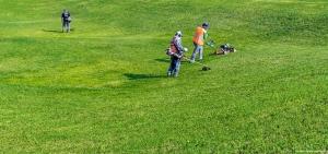 Rasen- und Grünflächenpflege Hamburg