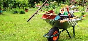 Kleingartenpflege ganz groß