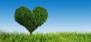 Hamburger Baum mit Herz