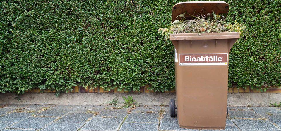 Entsorgung von Bioabfällen in Hamburg