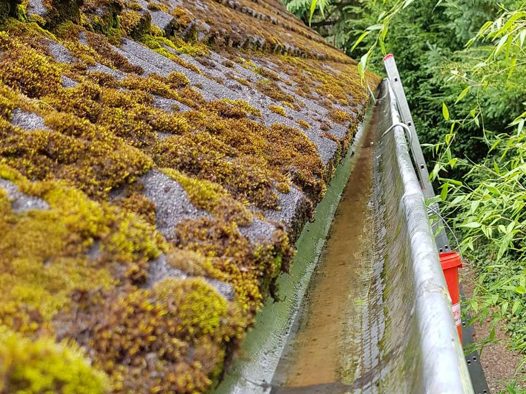 Saubere Regenrinne nach einer Dachrinnenreinigung