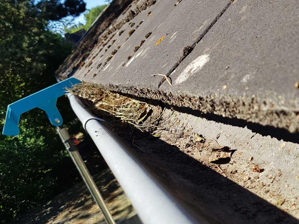 Regenrinnenreinigung mit Gardena Dachrinnenreiniger