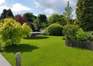 Ein schön angelegter Garten in Hamburg