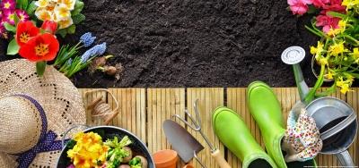 Gartenservice in Hamburg aus einer Hand