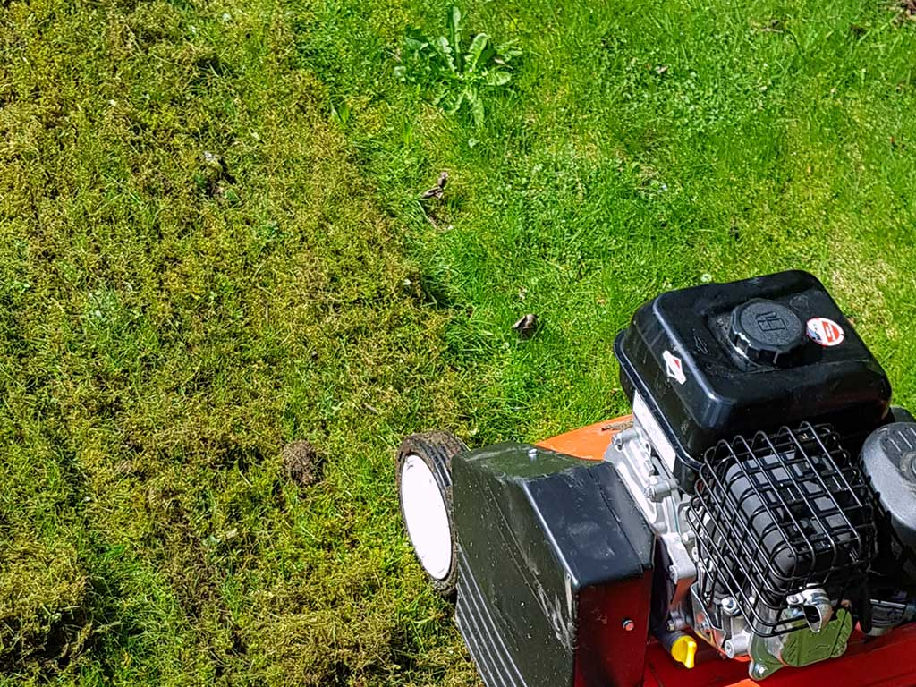 Vertikutierung eines Rasens zur Befreiung von Moos und Rasenfilz