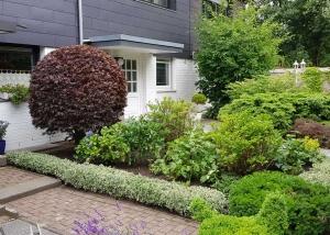 Professionelle Pflege eines chic-hergerichteten Vorgartens