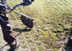Rasensteine von Durchwüchsen befreien mit Freischneider