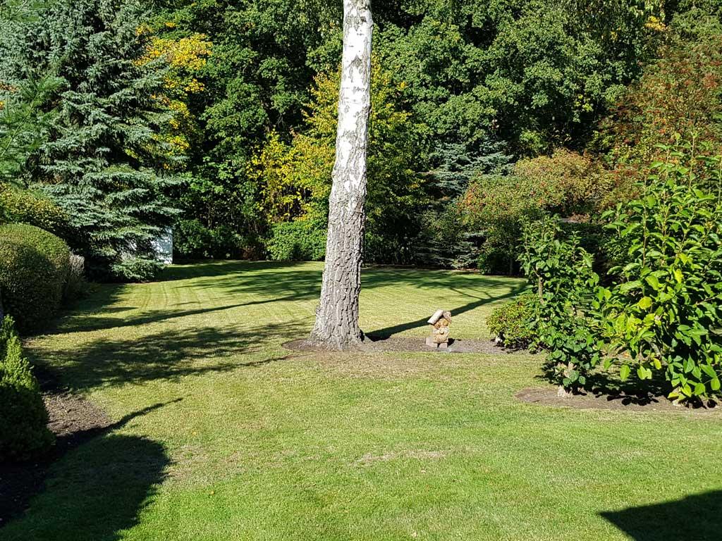 Regelmäßige Gartenpflege in Hamburg