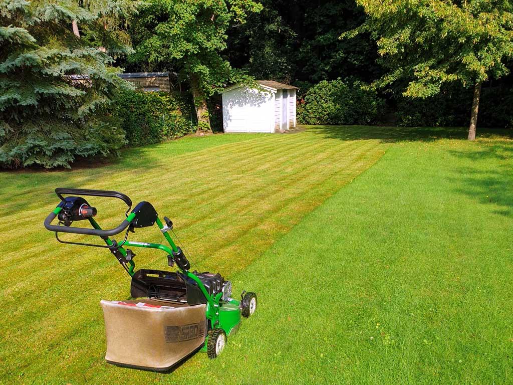 Rasenmähen in der vorher nachher Ansicht mit einem Sabo Rasenmäher in einem Hamburger Garten
