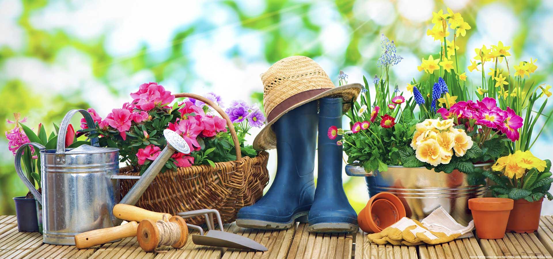 Gartenpflege in Billstedt in voller Pracht